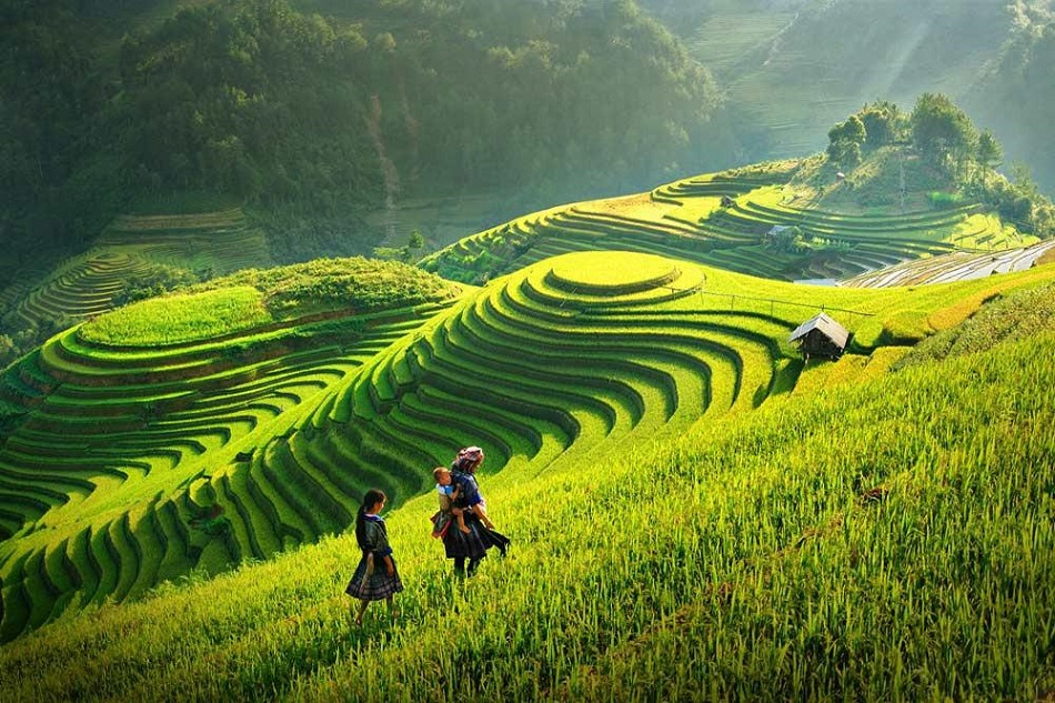 Sapa Tours, Cozy Vietnam Tours