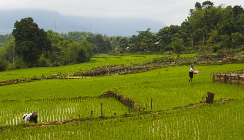 Hoa Binh Village, Cozy Vietnam Travel