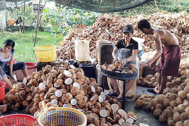 Coconut Workshop in Mekong Delta, Mekong Delta Tours, Cozy Vietnam Travel