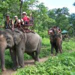 Dak Lak – Things to Do & See | Essential Guide to Visit Dak Lak