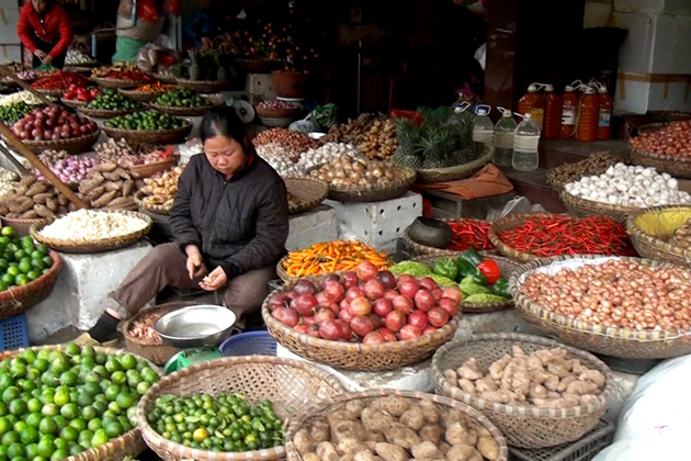 Fruit Local Market in Hanoi, Hanoi City Tours, Cozy Vietnam Tours