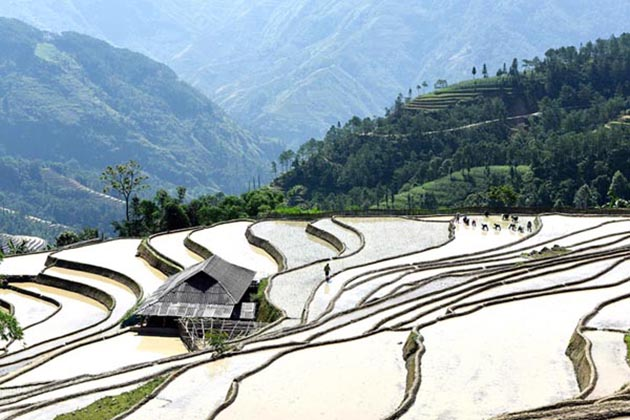 Ha Giang in Water Season in Ha Giang, Tours, Cozy Vietnam Travel