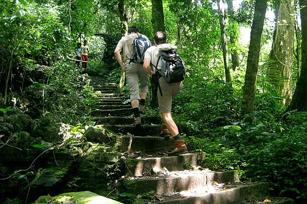 Hiking at Cuc Phuong National Park, Cozy Vietnam Travel