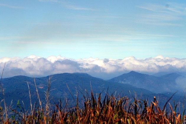 Langbiang Mountain in Da Lat, Tour, Cozy Vietnam Travel