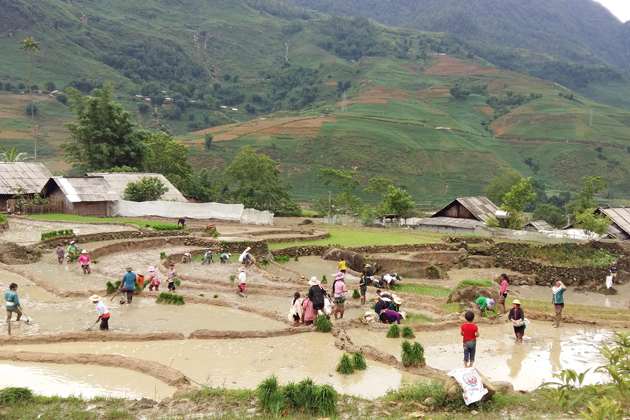 Lao Chai Culture in Sapa, Tour, Lao Cai, Cozy Vietnam Travel
