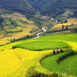 Best Things to Do & See in Lao Chai Village, Sapa