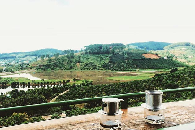 Me Linh Coffee Garden in Da Lat, Lam Dong, Tours, Lam Dong, Cozy Vietnam Travel