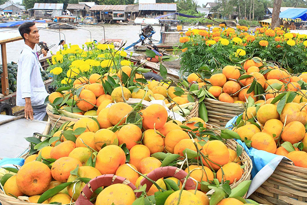 Floating Markets in Mekong Delta, Cozy Vietnam Travel