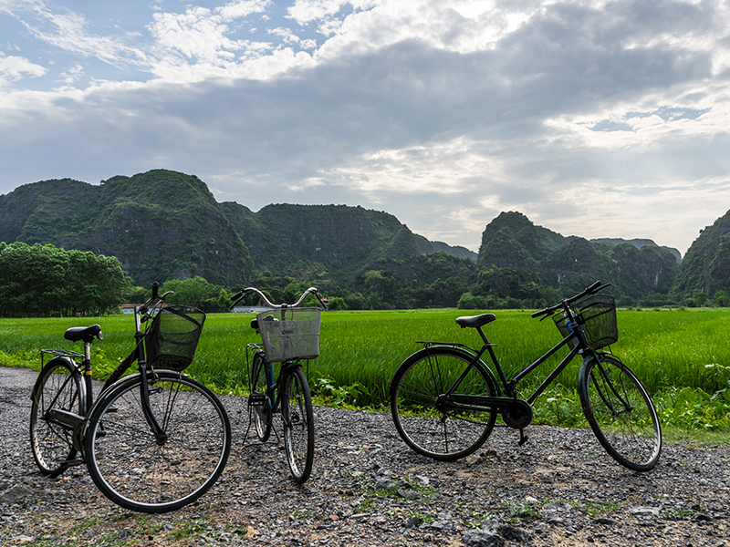 Get Ready to do Biking tour in Ninh_Binh, Travel, Tour, Cozy Vietnam Travel