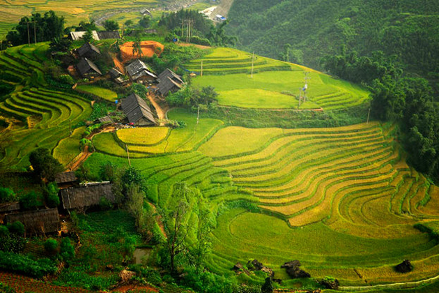 Ta Van Rice Terraces in Sapa, Tour, Sapa, Cozy Vietnam Travel
