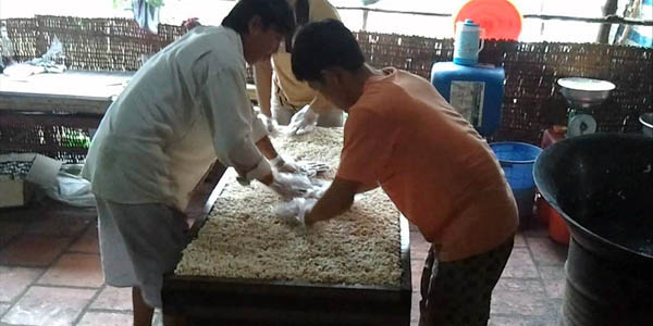 Rice pop corn workshop in Mekong Delta, Cozy Vietnam Travel, Vietnam Tours