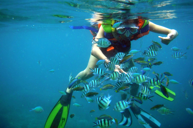 Nha Trang Scuba Diving, Nha Trang Tours, Vietnam Cozy Tours, Cozy Package Tours