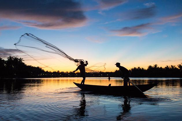 The local casting fishing net in Thu Bon River , Hoian, Cozy Travel