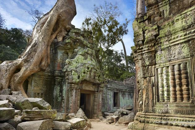 The-ruins-of-Ta-prohm