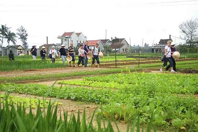 Tra Que Village in Hoi an, Hoi an Tours, Cozy Vietnam Travel