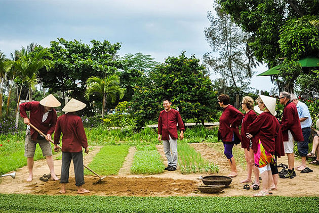 Hoi An Farming, Hoi An Travel, Cozy Vietnam Tours