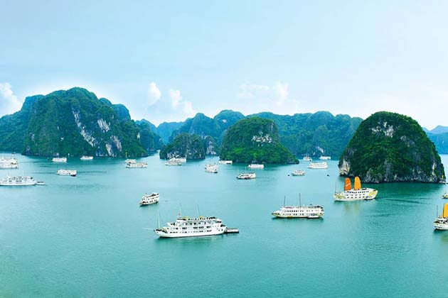 Ha Long Bay in Quang Ninh, Tour, Quang Ninh, Cozy Vietnam Travel