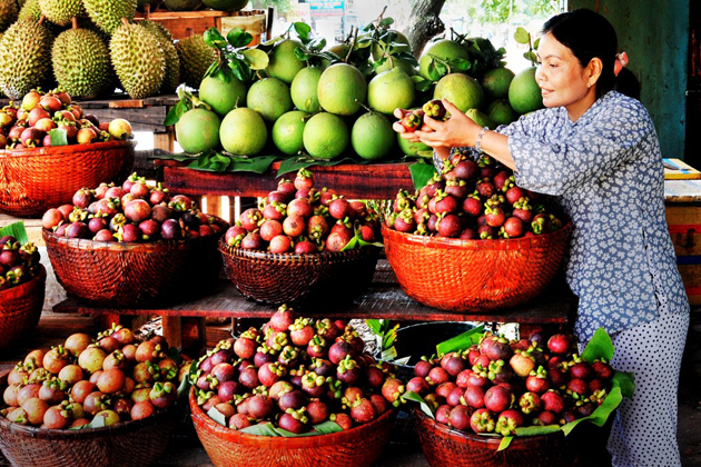Vinh Long Market, Mekong Delta Travel, Cozy Vietnam Travel