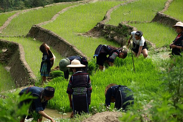 Y Linh Ho Village, Cozy Vietnam Travel