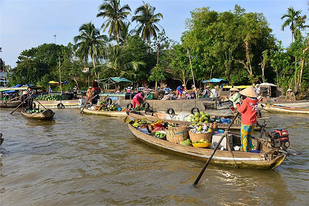 Cai Be Floating Market, Mekong Delta Tours, Cozy Vietnam Travel