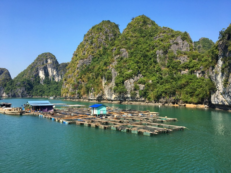 Cat Ba Island Tours,Halong Tours,Cozy Vietnam Tours,Vietnam Travel