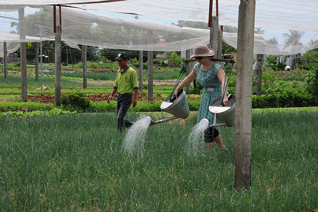 Tra Que Organic Gardens in Hoi an, Hoi an City Tours, Cozy Vietnam Travel