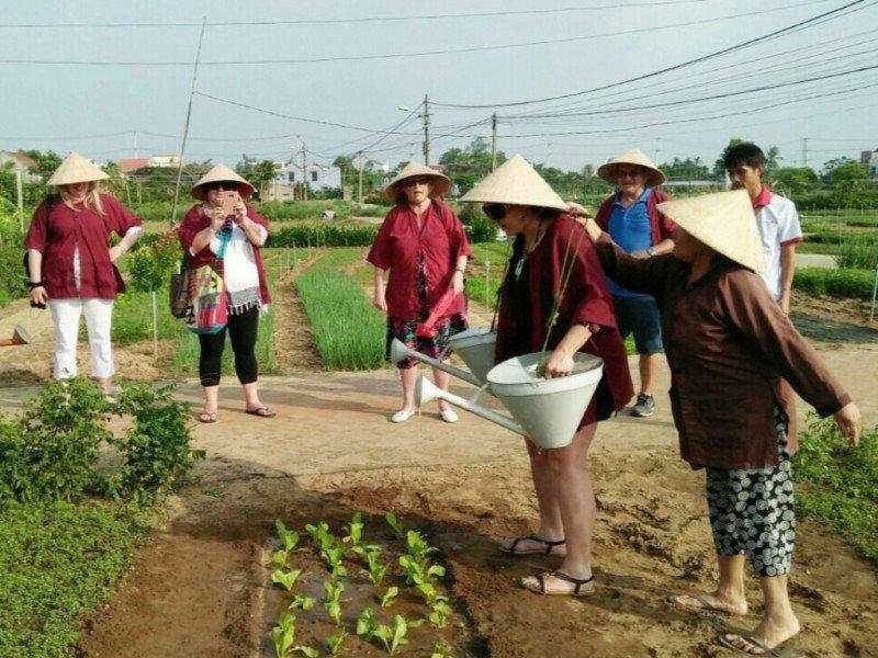 Hoi An Farming Tours, Hoi An Tours, Cozy Vietnam Travel, Vietnam Tours