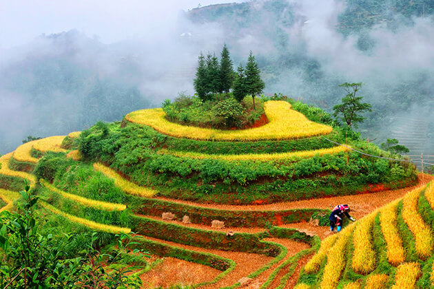 Red Yao Village, Sapa Tours, Cozy Vietnam Travel