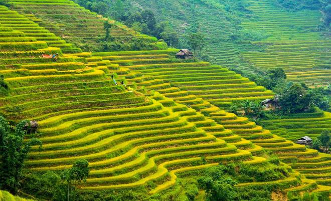 hoang su phi Overview, Cozy Vietnam Package Tours