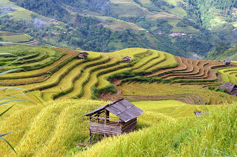 Romantic Hoang Su Phi Vietnam, Cozy Vietnam Travel