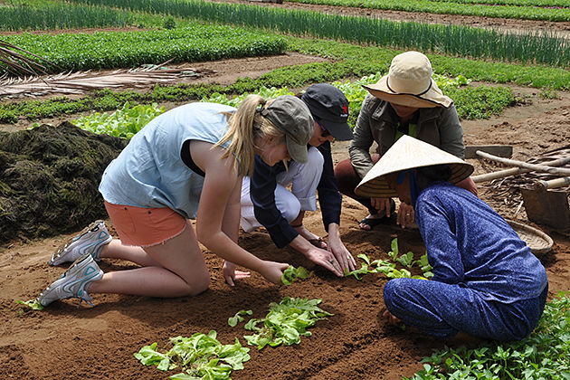 Hoi An Farming Tours, Hoi An Tours, Cozy Vietnam Travel, Vietnam Tours