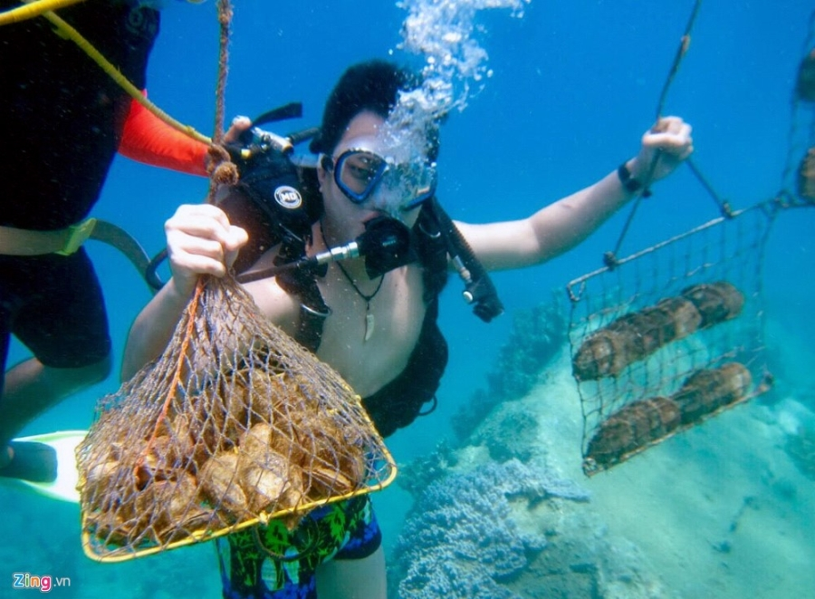 Nha Trang Marine & Beach Activities Tour