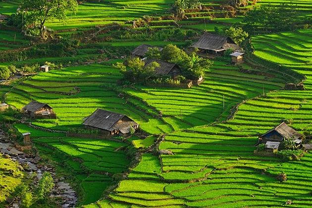 Mu Cang Chai, Yen Bai, Tours, Cozy vietnam travel