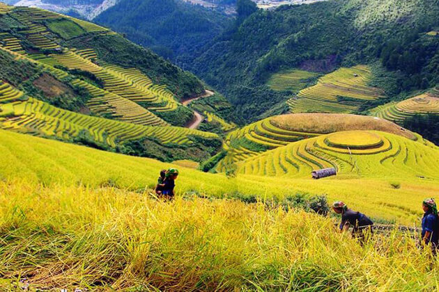 Muong Hoa Valley in Sapa, Sapa Tours, Cozy Vietnam Travel