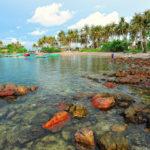 Best Thing to Do & See in Ha Tien, Vietnam