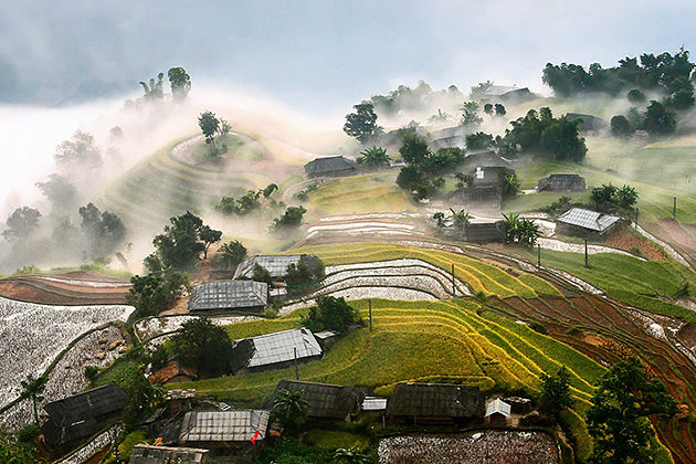 Rice Terrace Hoang Su Phi, Ha Giang, Tours, Cozy Vietnam Tours