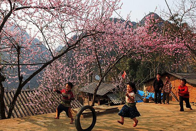 Muong Hoa valley, Sapa Tours, Cozy Vietnam Travel