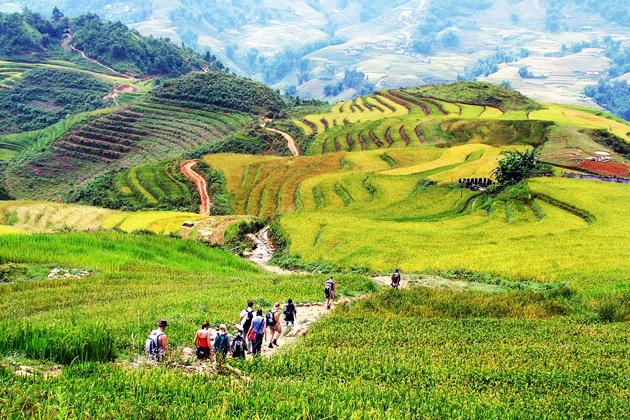 Trekking in Vietnam, Tours, Vietnam, Cozy Vietnam Travel