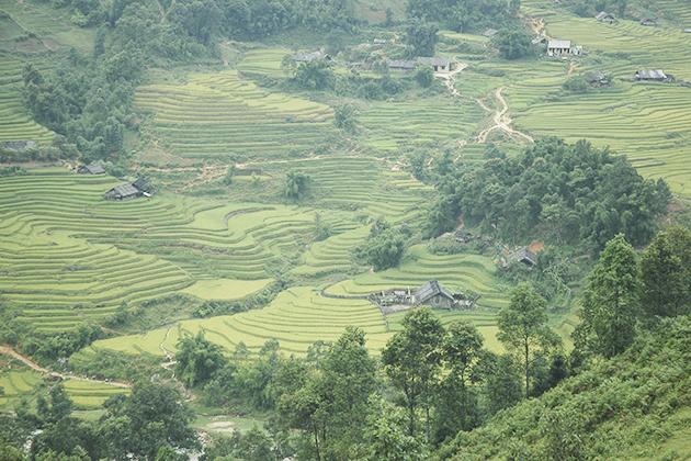 Y Linh Ho Village in Sapa, Cozy Vietnam Travel