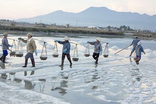 Hon Khoi Salt Fields, Cozy Vietnam Travel
