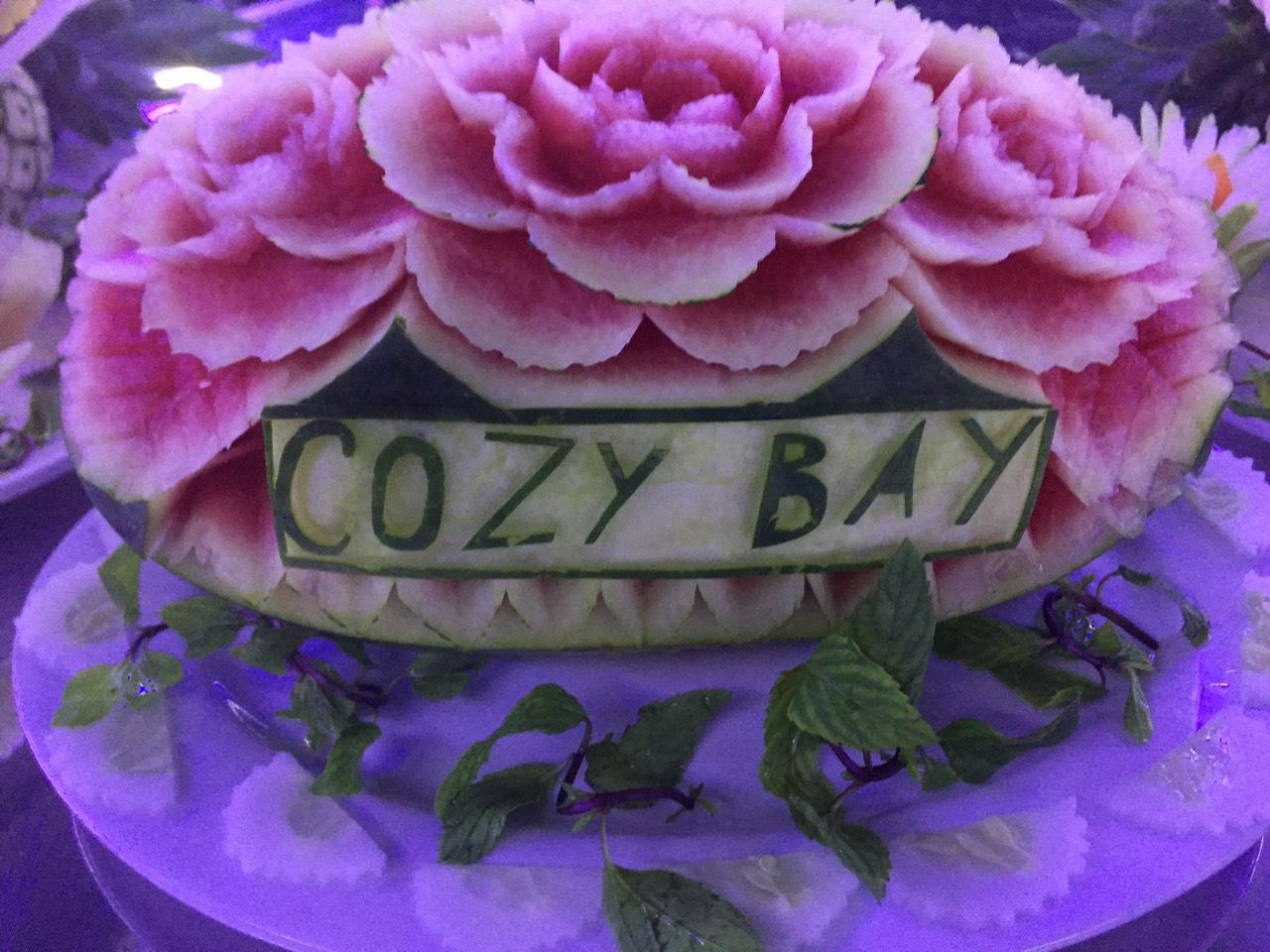 Cozy Vietnam Travel - Tour du lịch hạ long giá rẻ 2020 -121